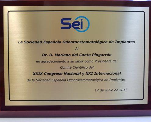 XXIX CONGRESO NACIONAL y XXI INTERNACIONAL de la SOCIEDAD ESPAÑOLA DE IMPLANTES -8